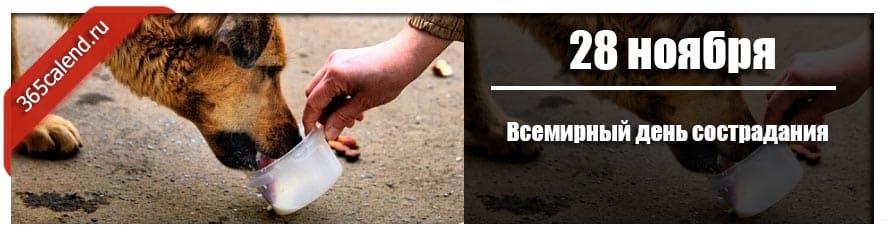 Всемирный день сострадания