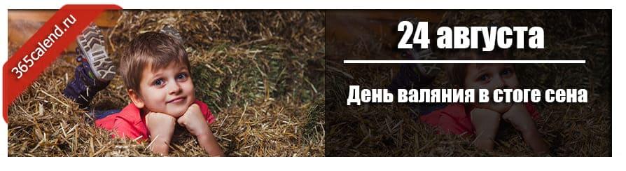 День валяния в стоге сена