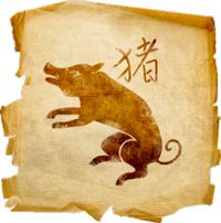 Денежный гороскоп на 2020 год для Кабана