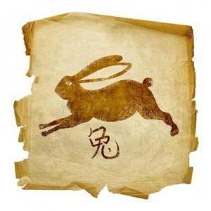 Денежный гороскоп 2020 года для Кролика