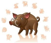 Гороскоп на 2020 год для Свиньи-мужчины