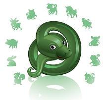 Гороскоп на 2020 год для Змеи-мужчины