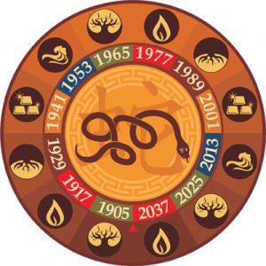Характеристика знака Змеи