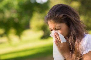 Общая информация о чихах