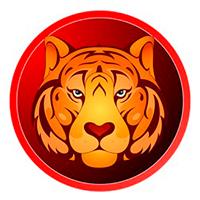 Денежный гороскоп на 2021 год для Тигра