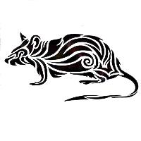 Гороскоп на 2021 для мужчины Крысы
