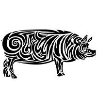 Гороскоп на 2021 год для мужчины-Свиньи