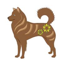 Гороскоп на 2021 год для женщины-Собаки