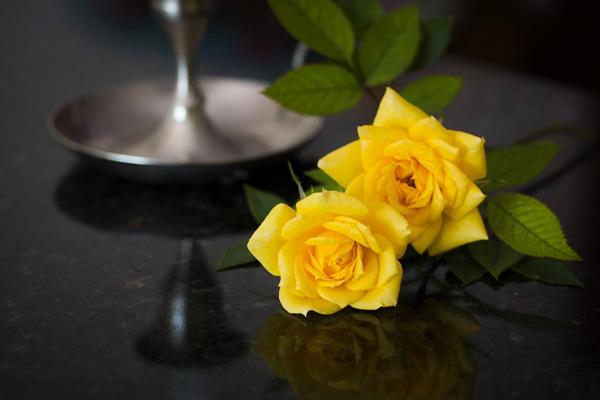 Магические свойства желтых роз