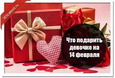 Что подарить девочке на 14 февраля