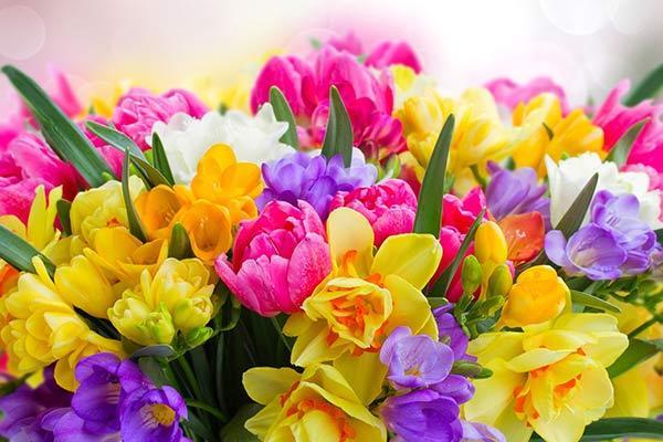 Дорогой подарок девочке 13, 14, 15, 16 лет на 8 марта